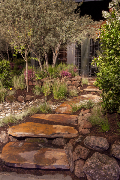 no_city_water_for_this_garden_3_20161102_1452845839