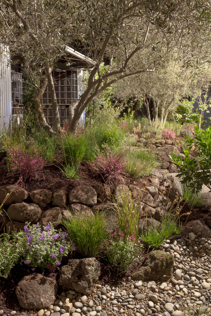 no_city_water_for_this_garden_7_20161102_1838017113